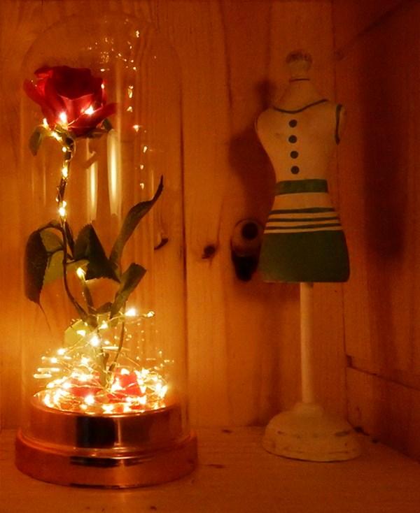 guirlande lumineuse led photo